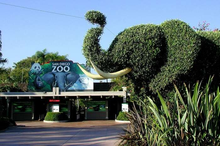 gate of the famous zoo in USA