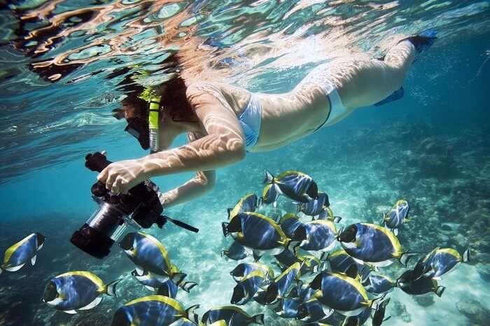 Snorkeling in Mirissa
