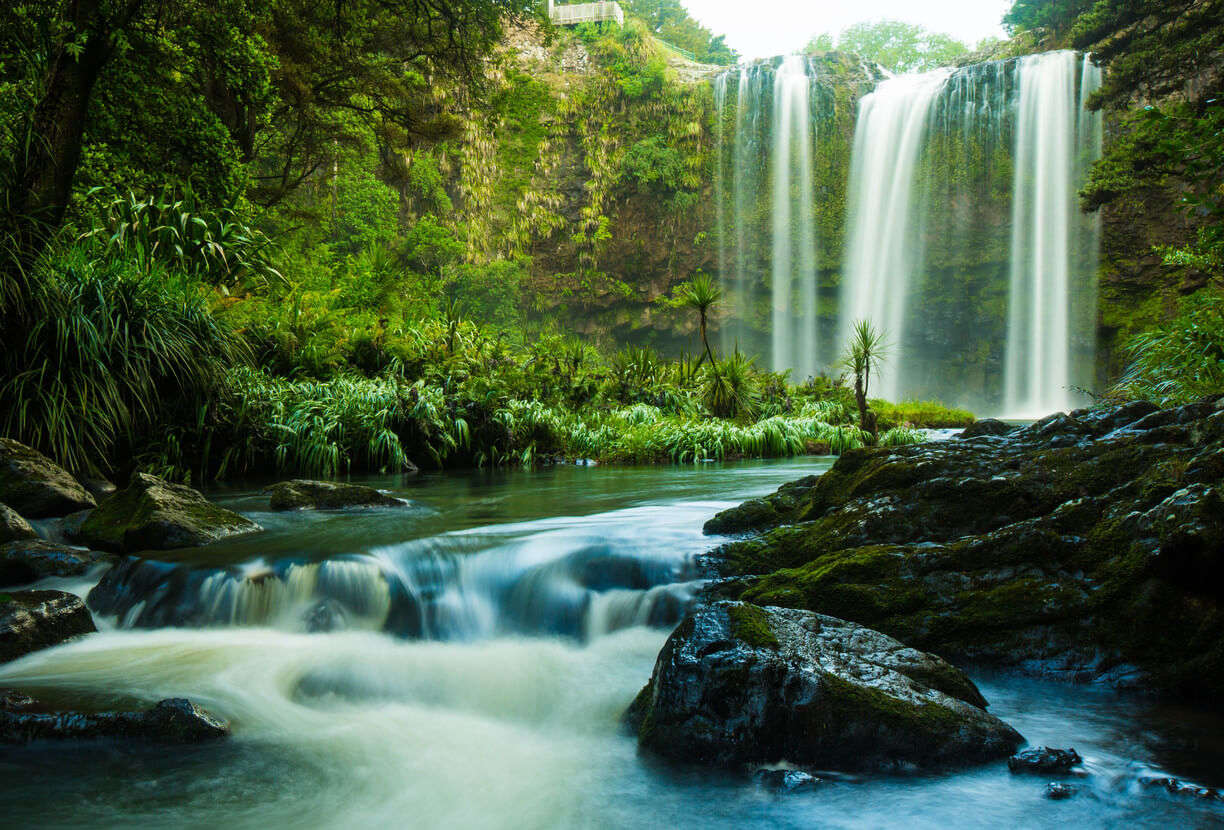 beautiful Whangarei Falls