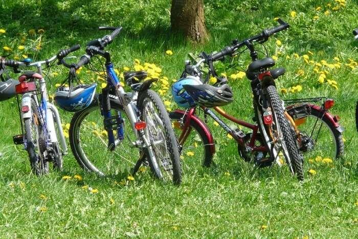 Wine Valley Bike Tour