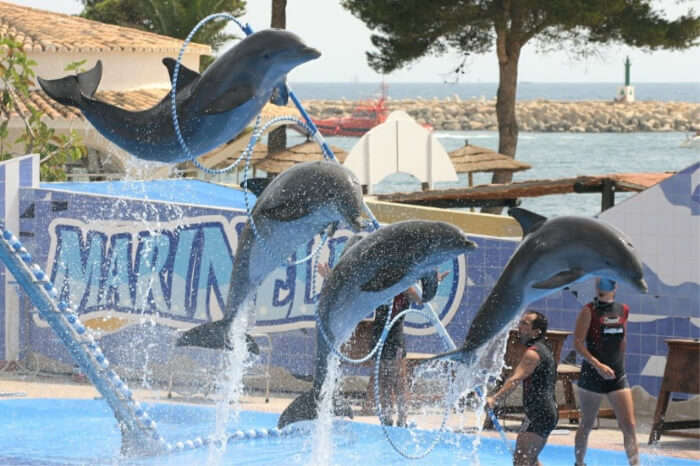 Atlantis Marmaris Waterpark