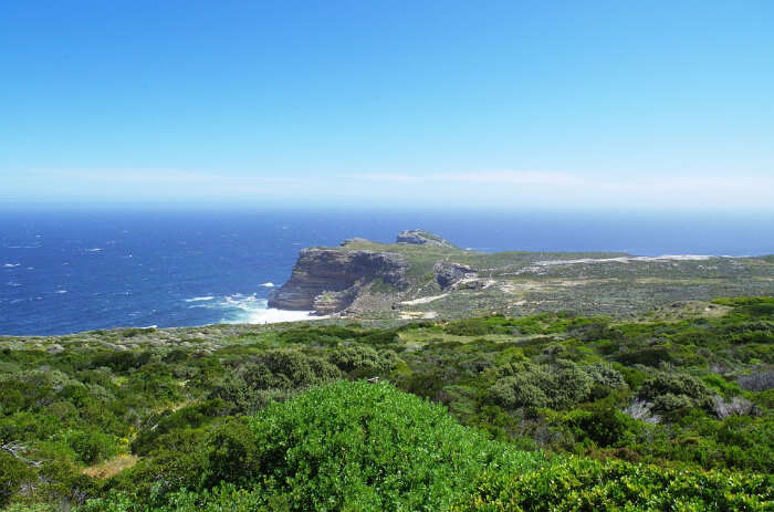 Best Time to Visit the Cape Point Nature Reserve