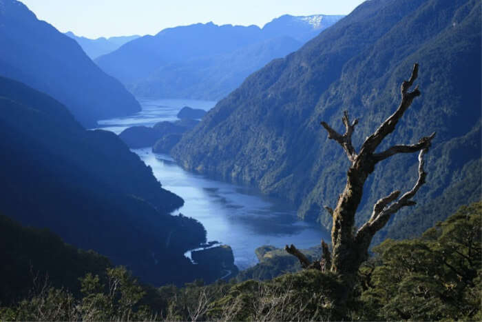 Fiordland Doubtful sound