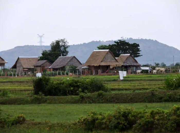 farmhouse view