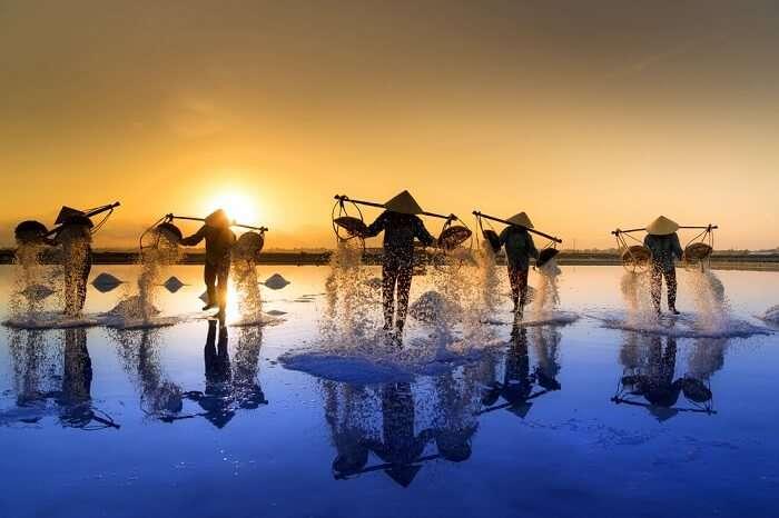 Visit In Nha Trang Hon Khoi Salt Fields