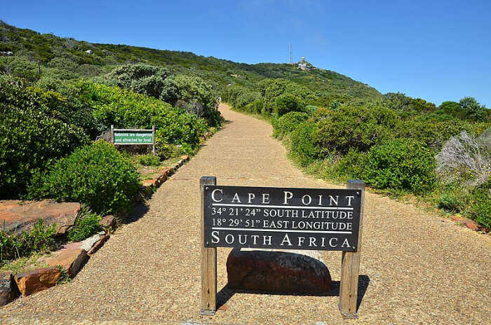How To Reach Cape Point Nature Reserve