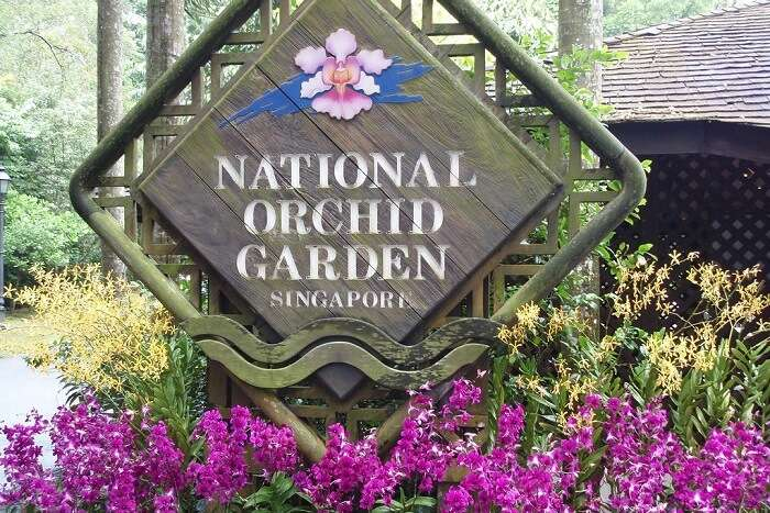 How To Reach National Orchid Garden