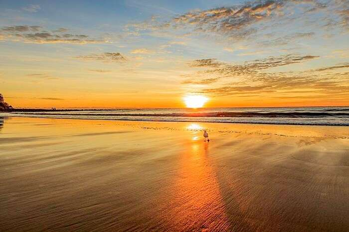 Kelly's_Beach_Sunrise