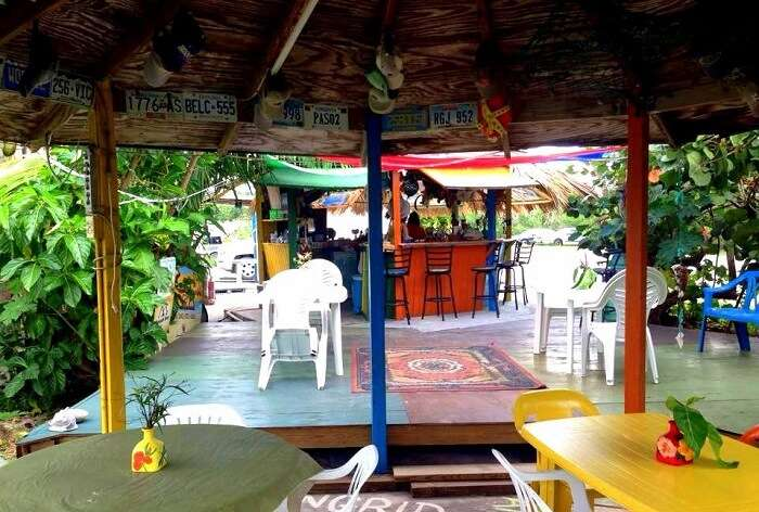 Max's Conch Bar & Grill