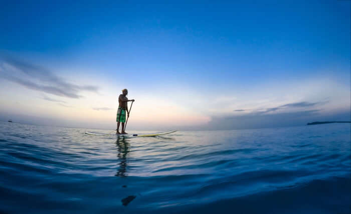 Surfing Or Stand Up Paddle Board