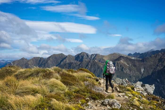 Walk Through Kepler Track