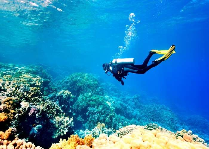 diving view