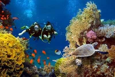 scuba diving for explorers