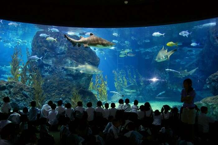 Ocean World in Bangkok