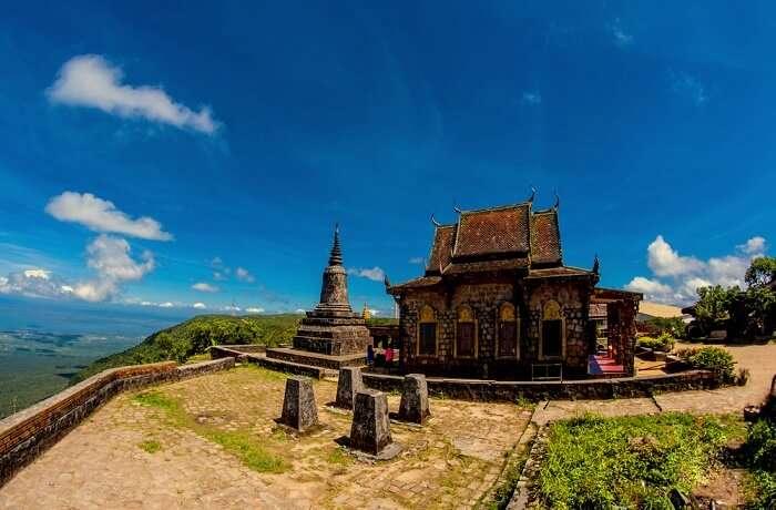 Black Pepper Price In Vietnam 2019