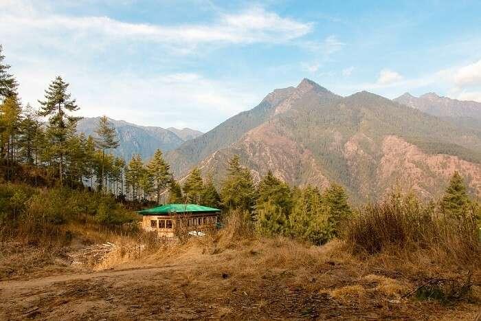 Bhutan hill view