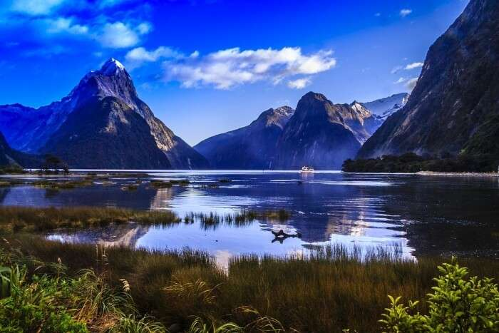 About Milford Sound in New Zealand