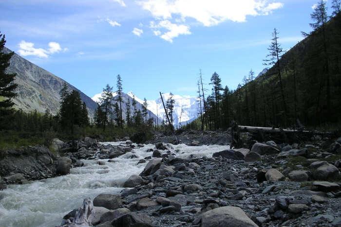 Altai-Reserve