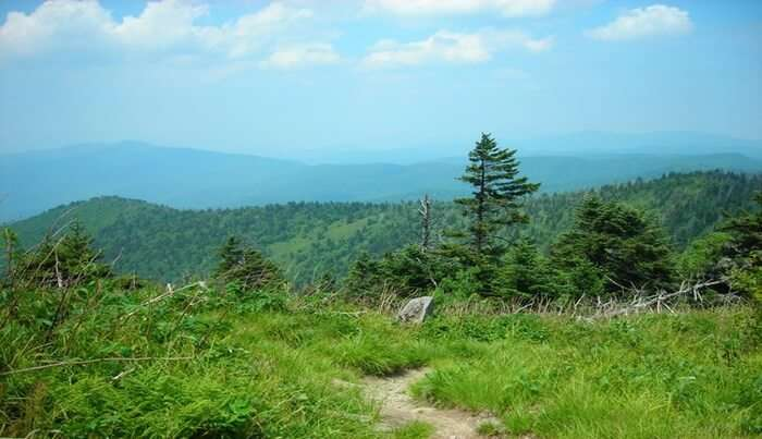 Appalachian National Scenic Trail