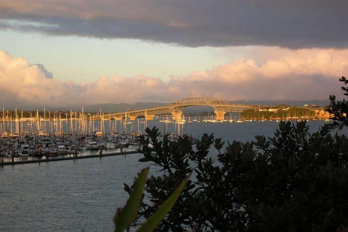 Beautiful city Auckland