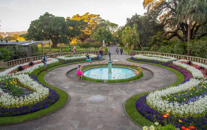 Botanical Gardens Of Sydney