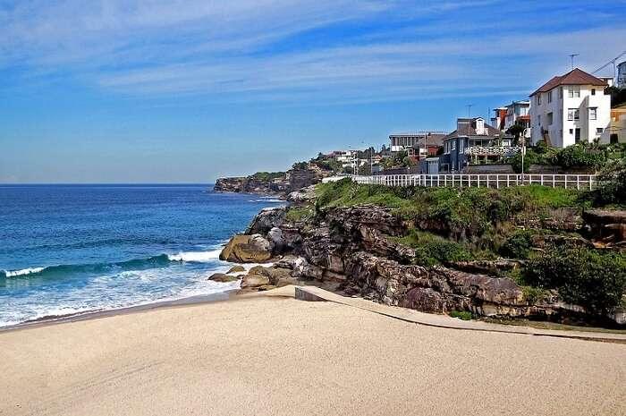 Travel Sydney Water Seashore Sea Coogee Beach