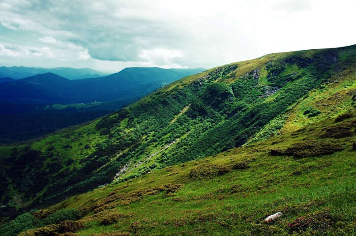 Cumbres de Monterrey National Park