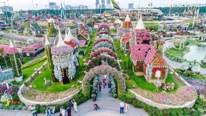Dubai Miracle Garden in Dubai