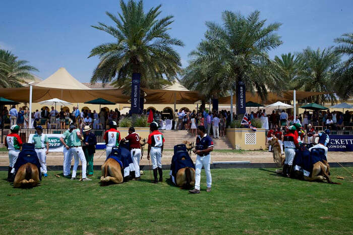 Dubai Polo And Equestrian Club in Dubai