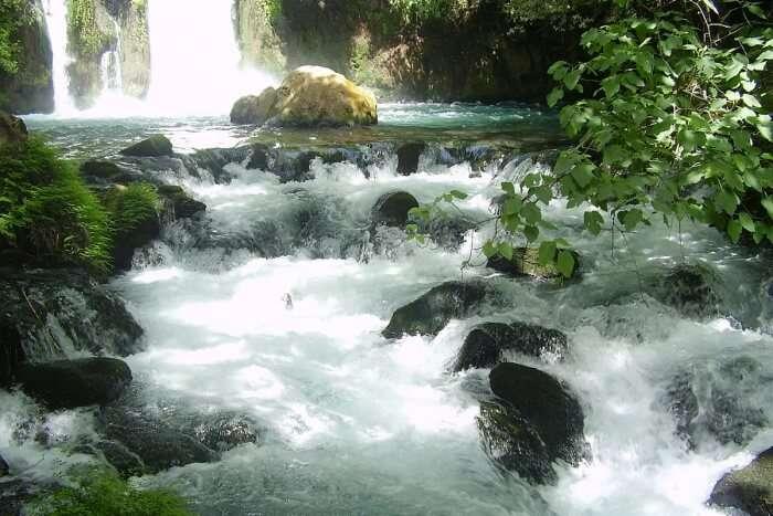 Eshed Waterfalls