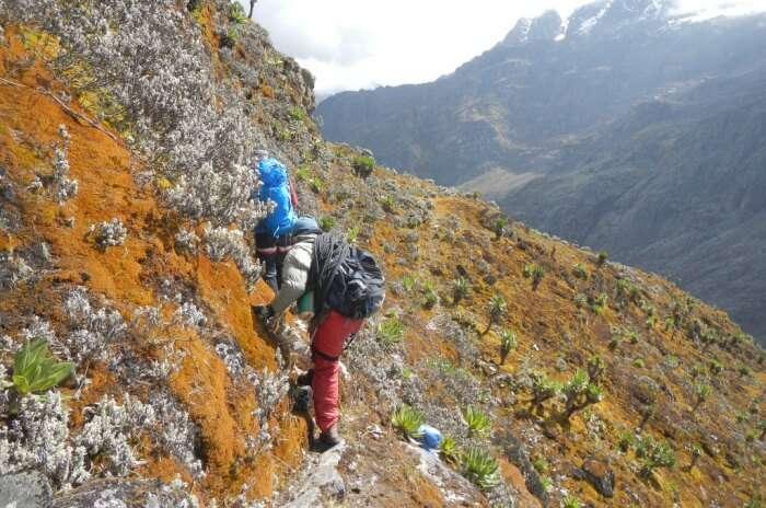 Go mountain trekking