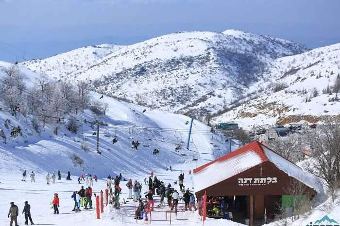 Go skiing at the Mount Hermon Ski Resort