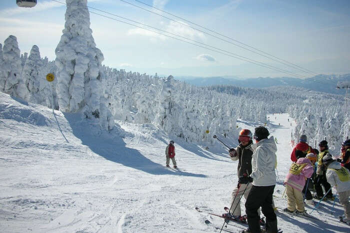 Go snowboarding or skiing