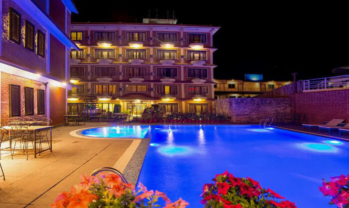 Hotel Dandelion