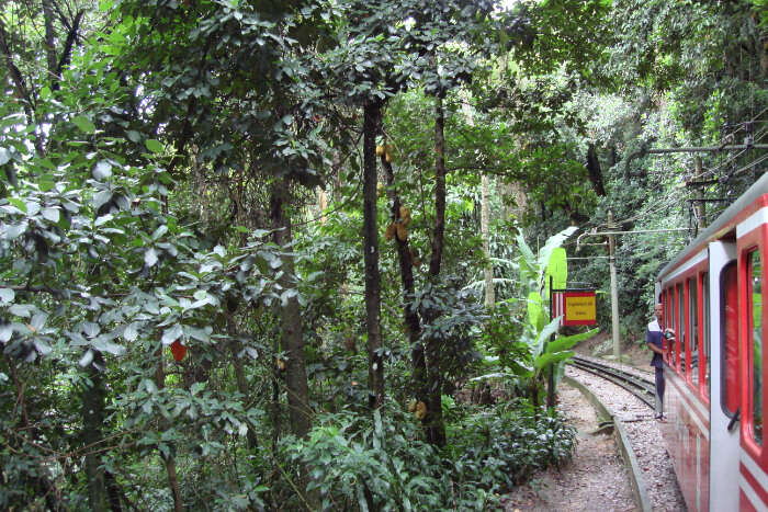How To Reach Itatiaia National Park