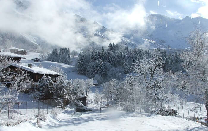 Jungfrau Winter Daylight View