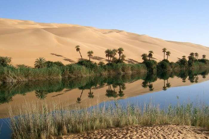Luxor Desert Safari Tour