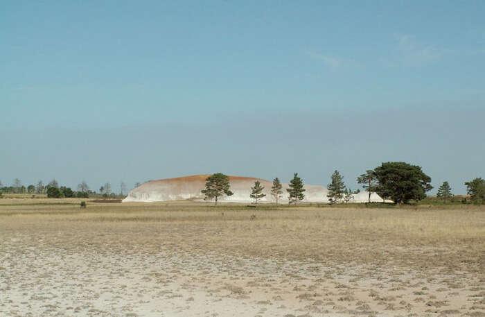 Naurzum Nature Reserve