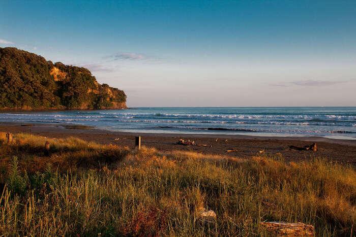 Otarawairere Shoreline