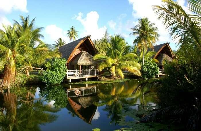 Palm-Bungalows