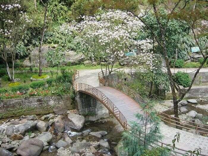 nightingale park darjeeling