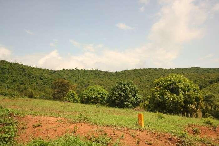 Pugu Hills