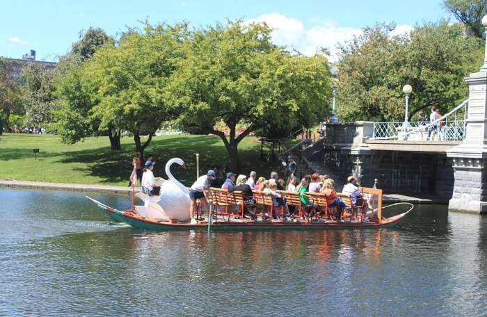 Sail Around On A Swan Boat