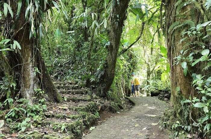 Selvatura Adventure Park