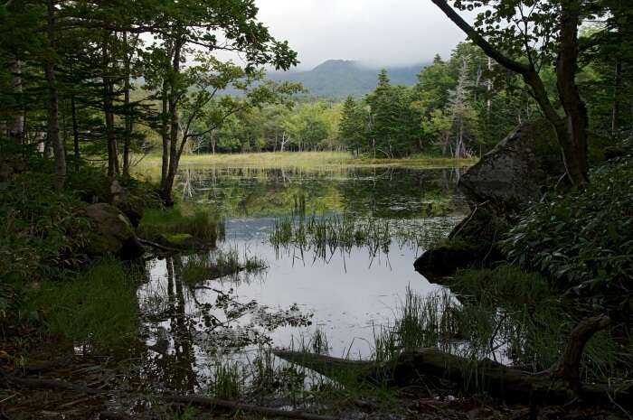 Shiretoko-National-Park.