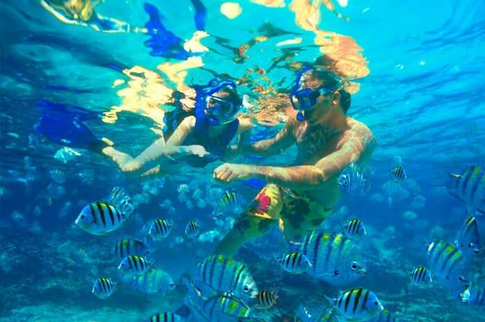 Snorkel and dive in the beautiful Red Sea