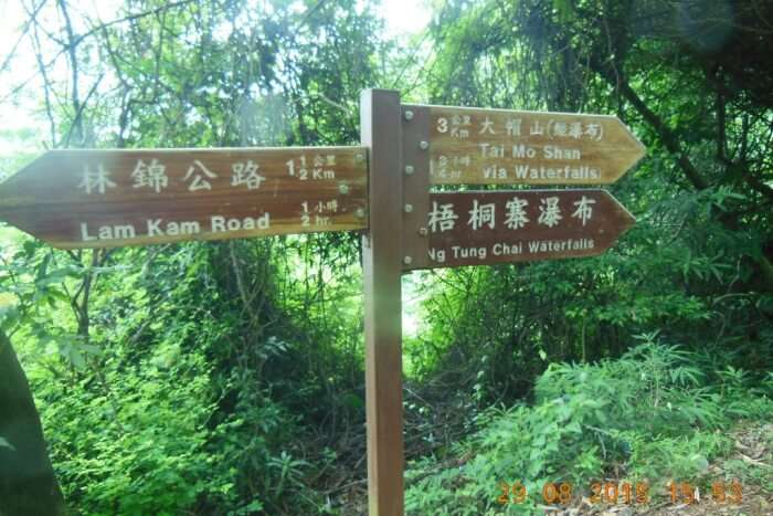 Tai Mo Shan Waterfalls