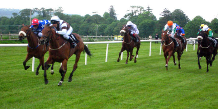 Try horse racing