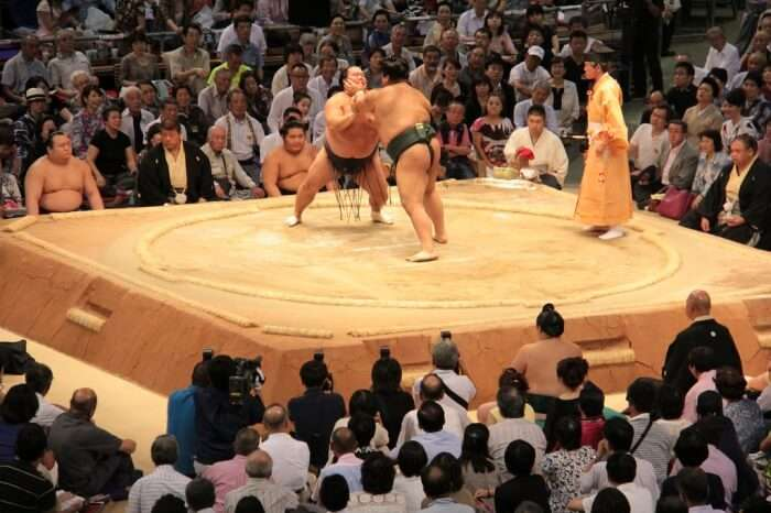 Watch a grand sumo tournament