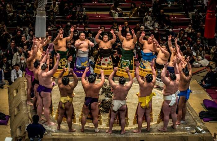 Watch-a-sumo-tournament